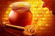Продаю Элитный мед с личной пасеки  в Самарской Луке