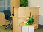 Ресепшн -cтойка (административная) для гостниц, салонов красоты, магазин