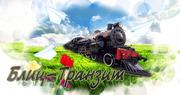 БЛИЦ -ТРАНЗИТ транспортная -экспедиторская компания