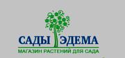 Интернет-магазин Сады-Эдема